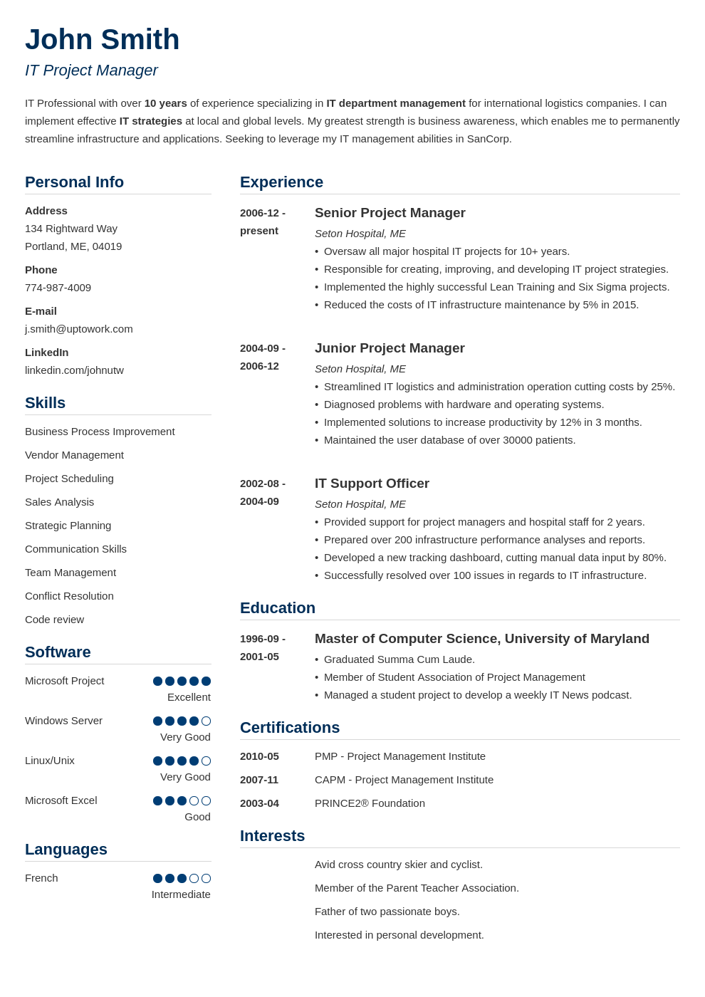 professionelles CV Muster Simple